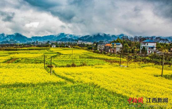 江西德兴:三清北麓踏青赏花  体验秘境风情