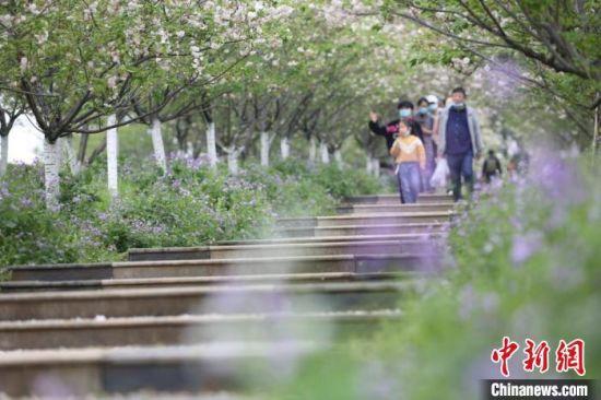 江西省清明假日期间旅游收入52.91亿元