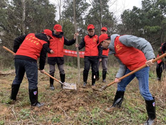 播种绿色 中建五局超英志愿者开展植树活动