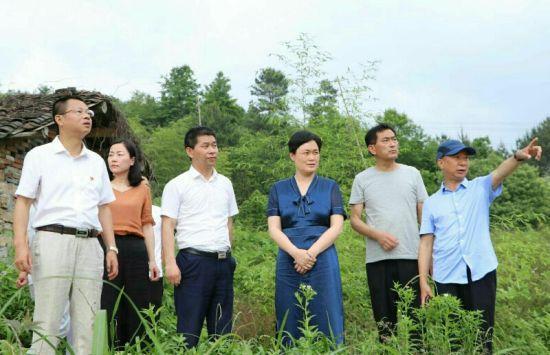 德兴市委书记刘瑞英(右三)经常深入一线找问题,现场办公抓落实,持续有力推动当地生态文明建设不断迈上更高台阶。
