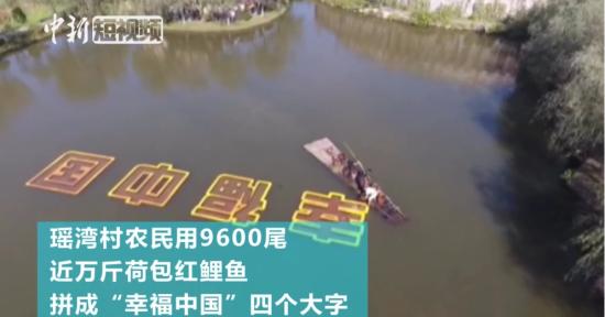 """庆国庆:农民用近万斤荷包红鲤鱼拼""""幸福中国"""""""