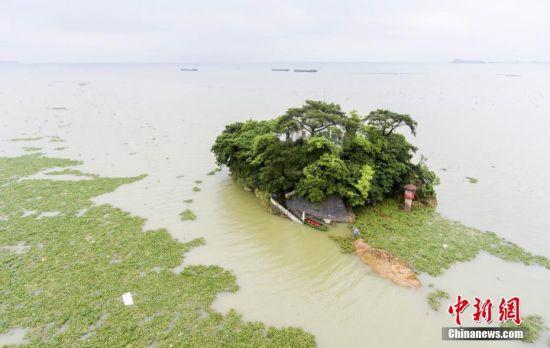鄱阳湖水位全线超警戒线 防汛形势严峻