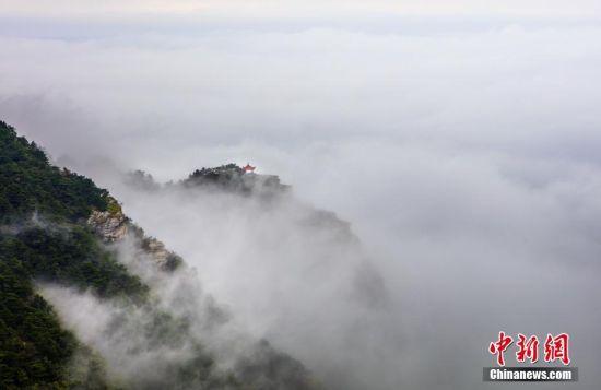 注册送白菜网庐山现壮观云海 云雾缭绕如梦如幻