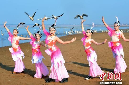 """渔家女孩鄱阳湖畔演绎""""人鸟共舞"""""""