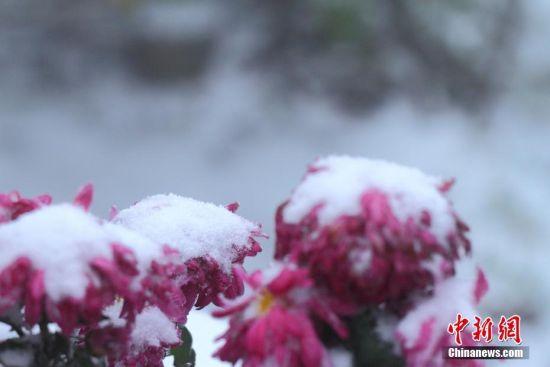 注册送白菜网庐山迎来2017年入冬首场降雪