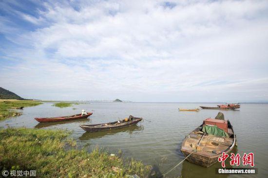 龙8国际娱乐手机登录九江持续降雨 鄱阳湖水位快速上涨