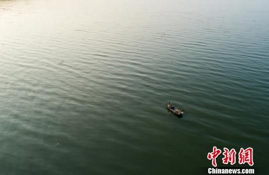 鄱阳湖迎来青虾捕捞季 渔民收获忙