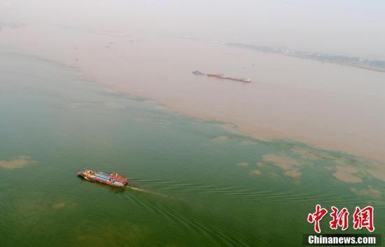 """鄱阳湖口现""""江湖两色""""奇观"""