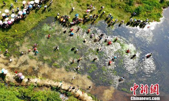 龙8国际娱乐手机登录仙女湖举行首届丰收节 抓鱼比赛趣味浓