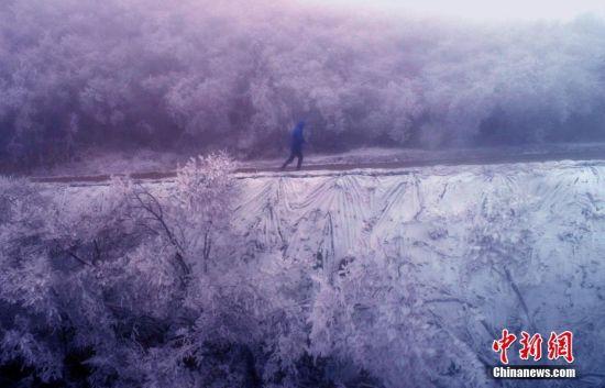 一片银装素裹 航拍龙8国际娱乐手机登录万载冬季首场大雪