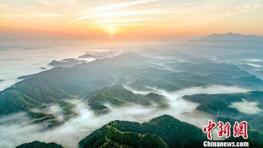 绝美!航拍龙8国际娱乐手机登录武宁云雾漫山飘
