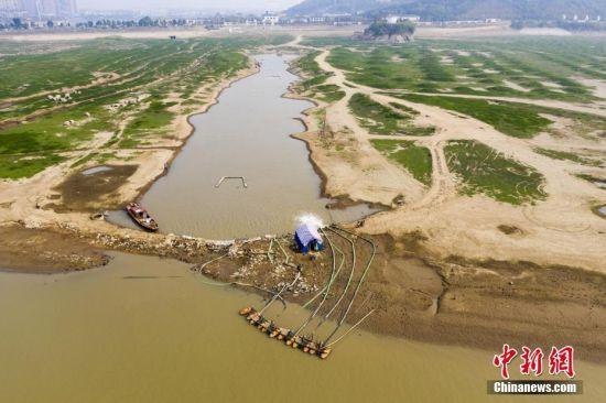 江西湖口水域灘涂大面積裸露