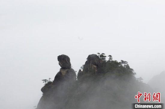 """""""江(jiang)南第一(yi)仙山""""三清山 雲霧繚(liao)繞如(ru)水(shui)墨仙境"""